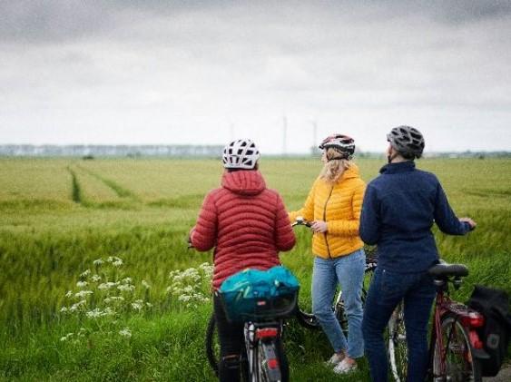 Drei Radfahrerinnne blicken auf ein langes Feld mit Weizen