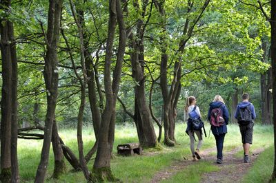 Wanderer im Naturpark Aukrug
