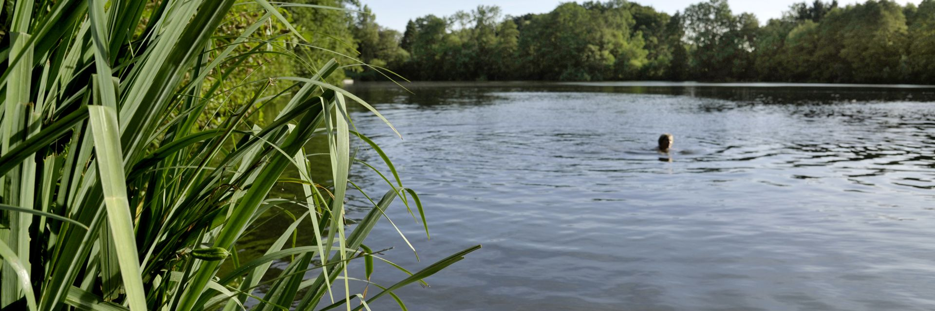 Baden im Rensinger See bei Kellinghusen
