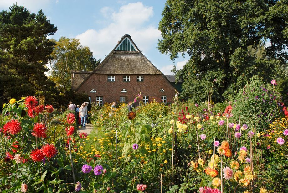 Das Bild zeit das reetgedeckte Hauptgebäude im Arboretum und den blühenden Bauerngarten.