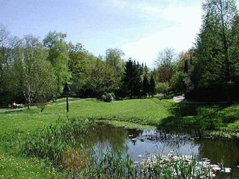 Zwischen einheimischen und Bäumen aus fremden Ländern kann man im Baumgarten perfekt die Seele baumeln lassen.