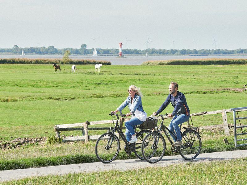 Zwei Radfahrer fahren an einer Pferde Wiese an der Elbe mit Leuchtturm und Windrädern vorbei