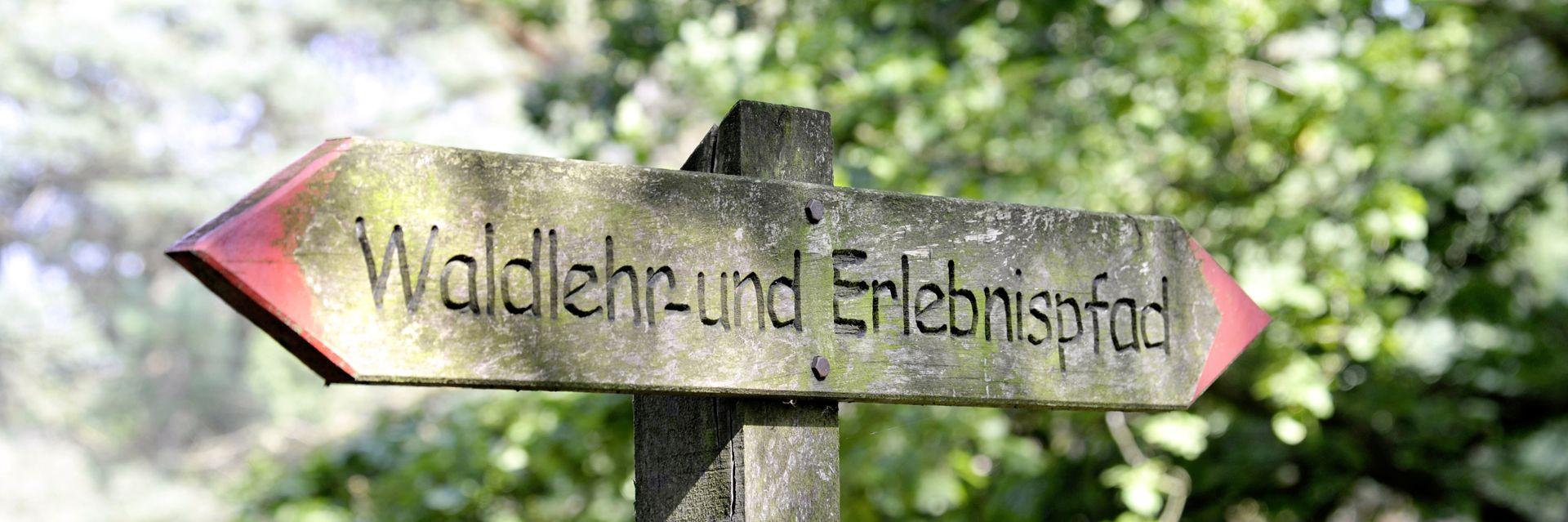 Naturerlebnispfad Störkathener Heide
