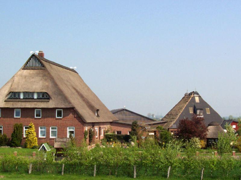 Das Bild zeigt den reetgedeckten Ferienhofe Krey am Elbdeich in Wewelsfleth