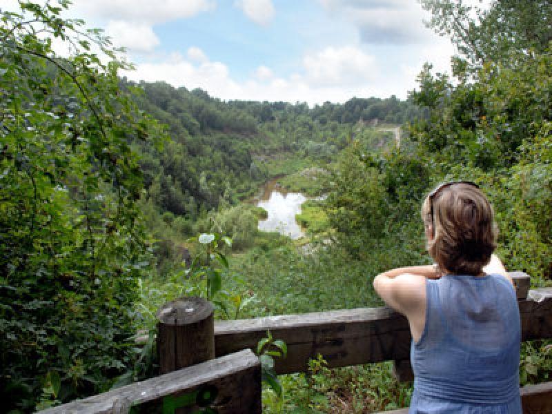 Auf der 105km langen Gartenroute erleben Sie die für Pinneberg typischen Gartenbesonderheiten.