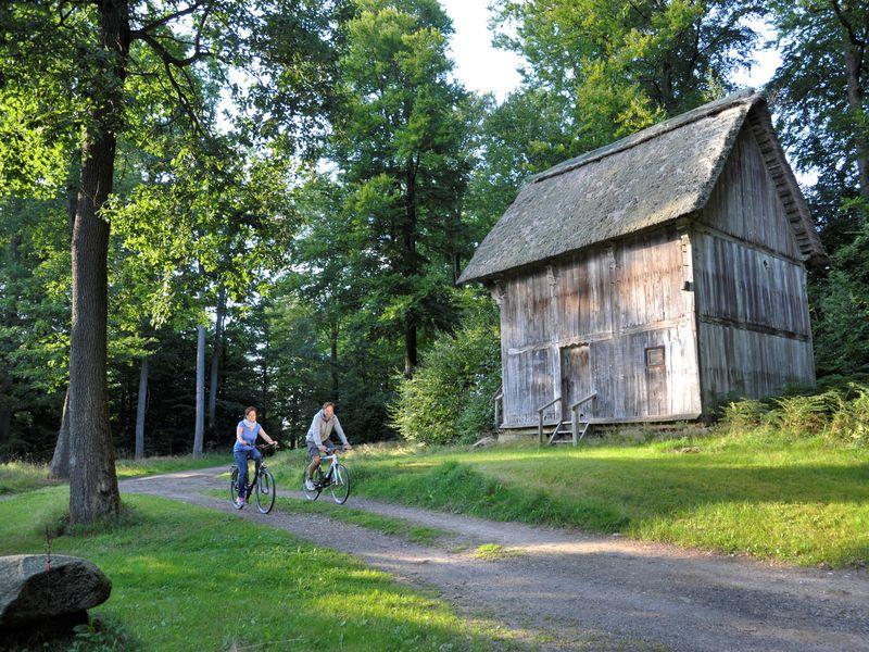 Zwei Radfahrer fahre nim Wald vor einer alten Hütte vorbei