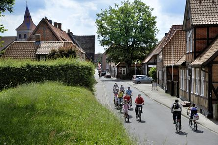Radfahren auf dem Elberadweg