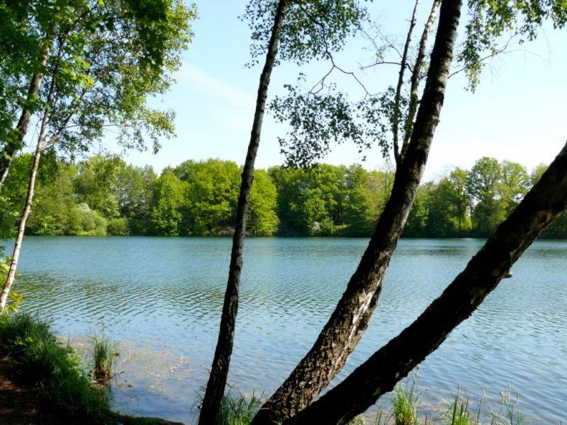 Der Rensinger See in Kellinghusen bietet einen tollen Rundgang und zur Abkühlung sogar eine Badestelle.