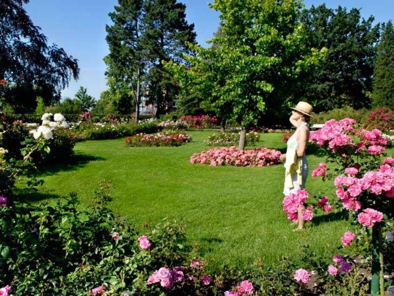 Das Rosarium in Uetersen bietet Führungen durch das 7 Hektar große Gelände.
