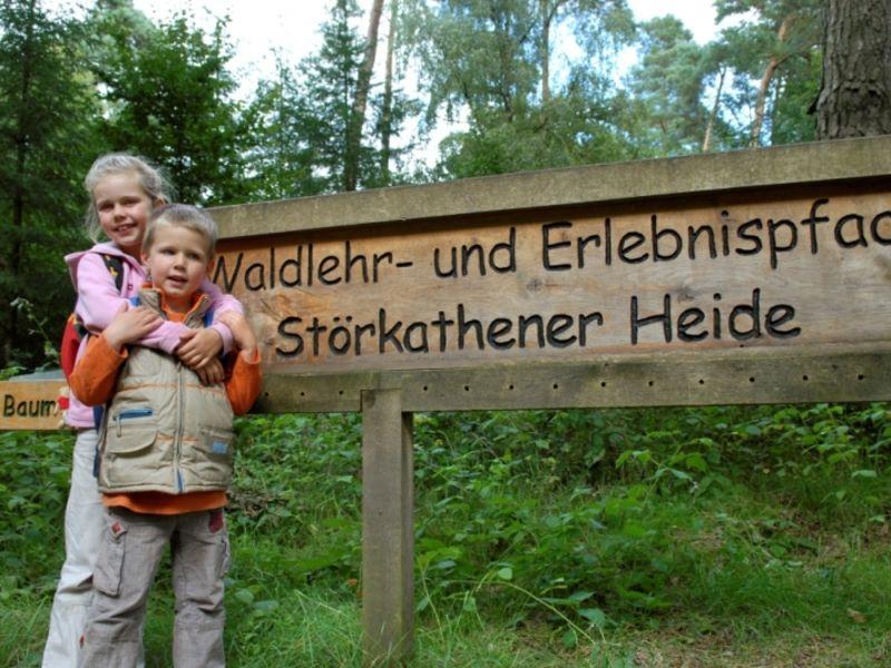 Ein informativer Spaziergang in der Störkathener Heide.