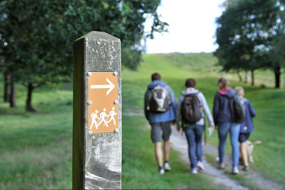 Gruppe von Wanderern im Naturpark Aukrug