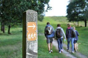 Eine wandernde Familie im Naturpark Aukrug