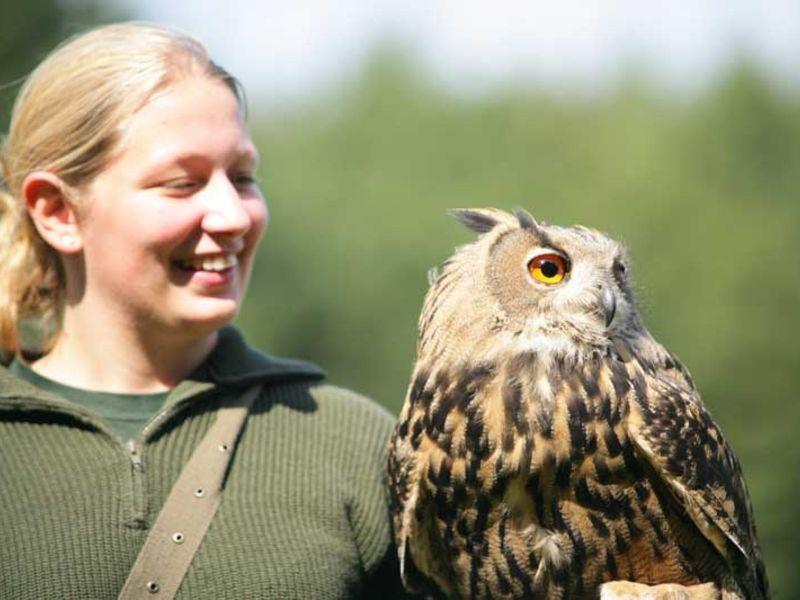 Der Wildpark ist ein ideales Ausflugsziel für Familien und alle die sich für die Tiere aus unserer Region interessieren